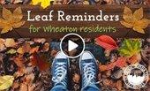 Leaf Reminders